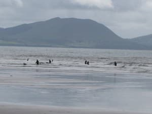 Inch beach in castlemaine harbour kerry