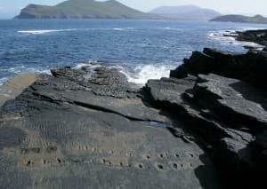 Tetrapod fossil tracks valentia Island County Kerry Ireland